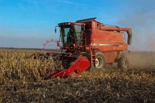 Жатка кукурузная Нью Холланд